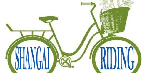 """Una bici si aggira per Shangai, il progetto Arci-Linc """"Shangai Riding"""""""